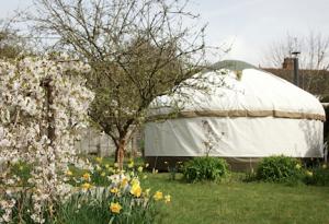 Garden Yurt Counseling